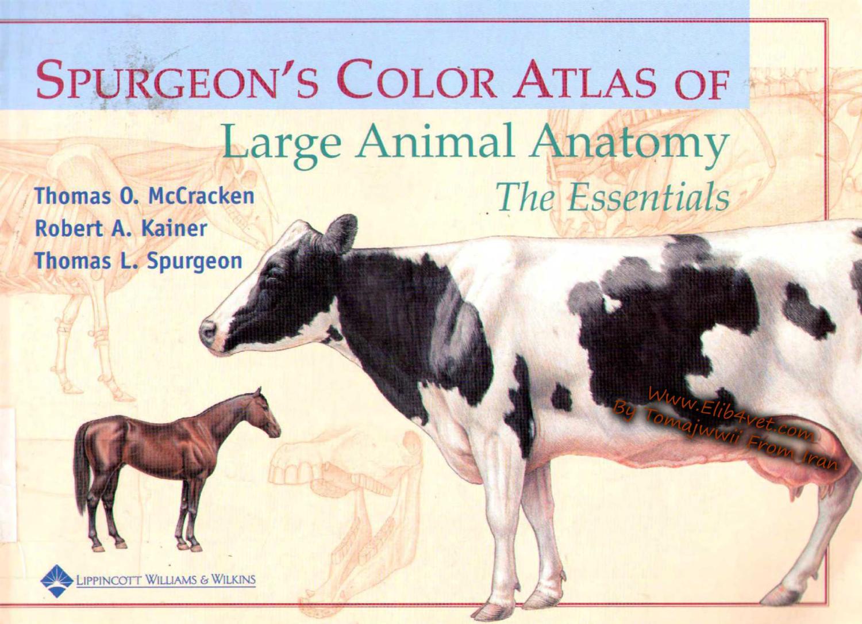 ATLAS COLORIDO GRANDES ANIMAIS SPURGEON - Anatomia Veterinária