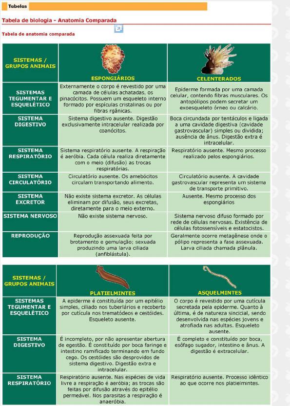 Lujo Biología Anatomía Comparada Viñeta - Anatomía de Las ...